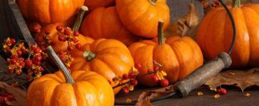 Salute a tavola – la spesa di Novembre